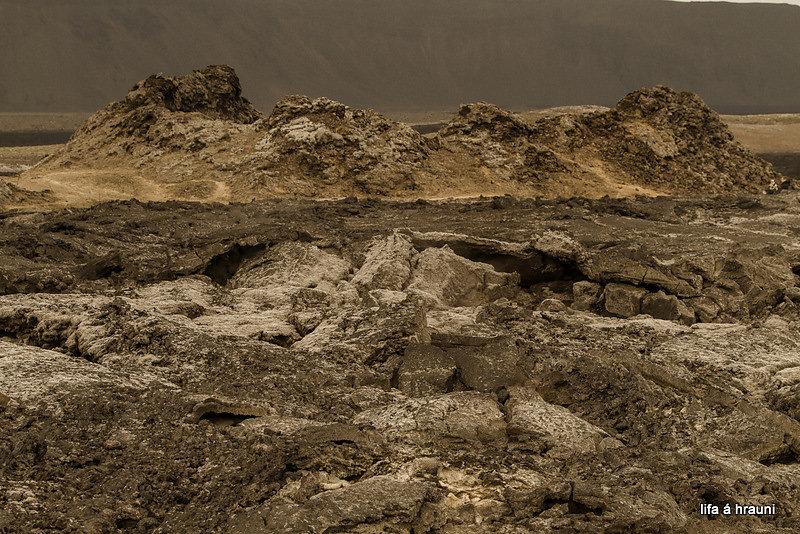 iceland-life-on-lava-5.jpg